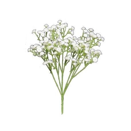 Dekorblume, Gypsophila Viette bush, Exner